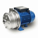 Ebara 2CDX Pump