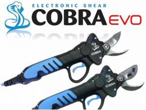 Campagnola Cobra Evo